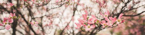 Spring Awakening wedding, flowers by LynnVale Studios, photos by Carly Romeo & Co.